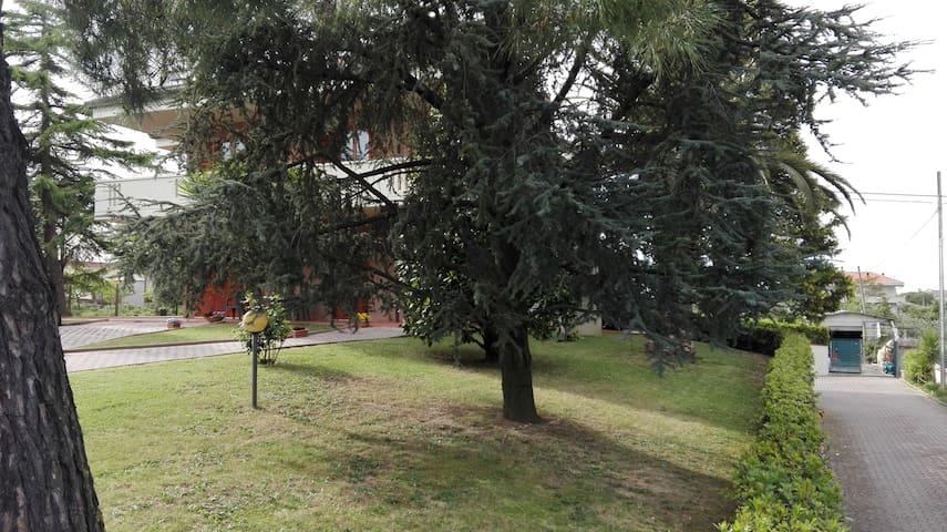 Affitacamere a Porto Sant'Elpidio