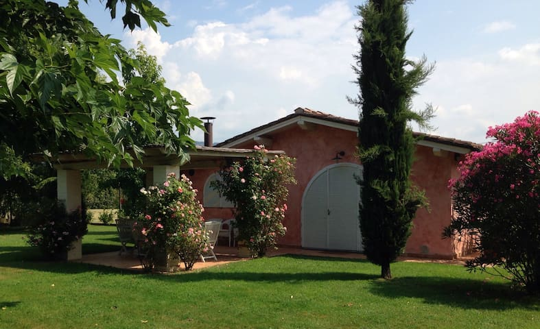 Casina con piscina nel verde - Buggiano  - Other