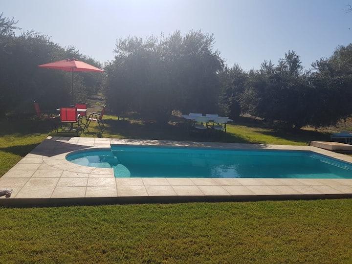 Casa panorámica y piscina en el olivar