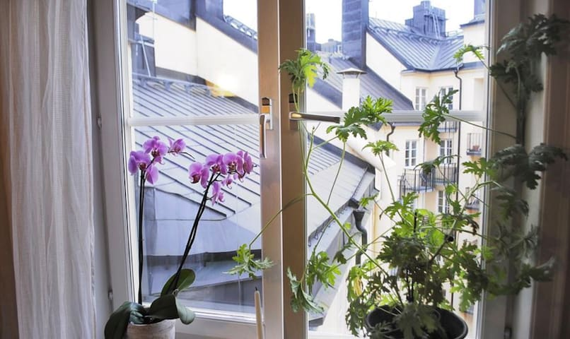 Charming apt in the heart of Södermalm