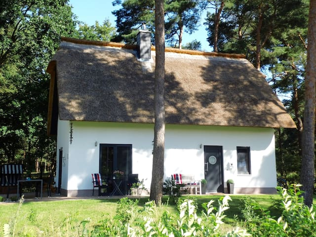 Idyllisches 5*****Komfort-Ferienhaus am Haff - Zirchow - House