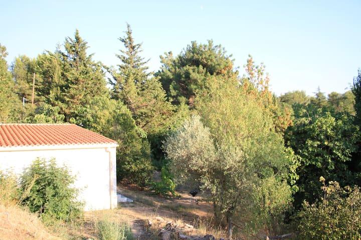 Maison au calme + jardin prox mer, campagne, ville - Aubagne - Huis