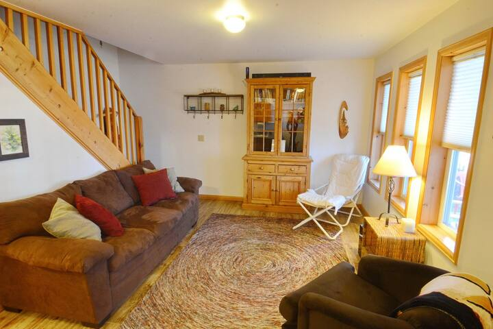 In Town! Slps 6! Remodeled! - Crested Butte - Apartamento