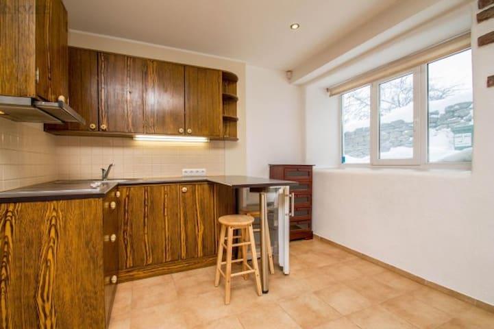 Small studio - flat - Tallinn - Apartment