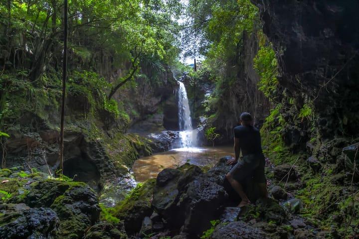 ALL INCLUSIVE.. Kauai & The Big Island