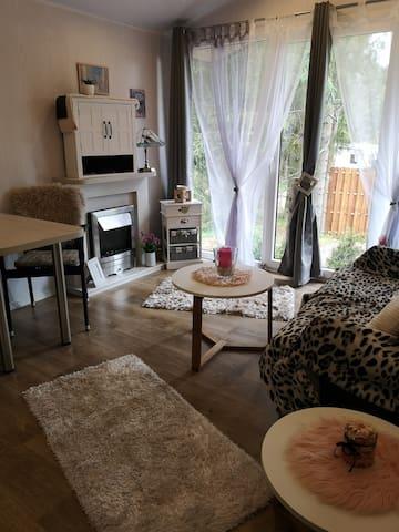 Wohnraum mit elektrischem Kamin