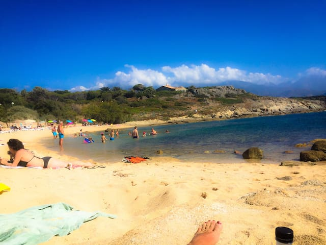 Calvi beaches just there.