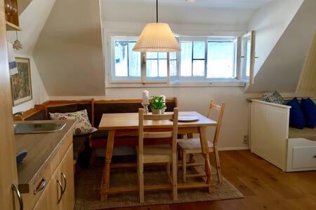 "Appartement ""Zum Franzl""- Edelweiss - Gosau - 公寓"