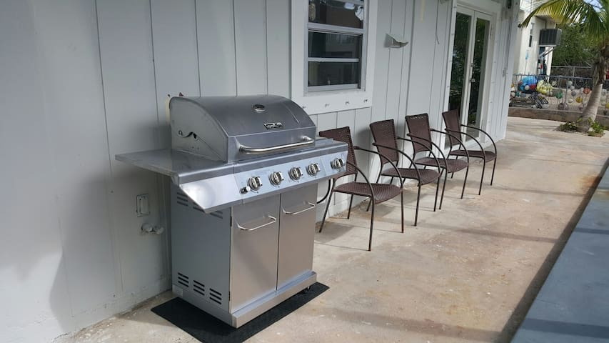 Stainless steel gas barbecue. Ready for grilling.