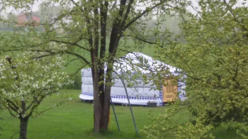 Una notte in yurta, immersa nel verde della Natura