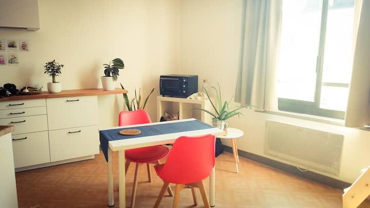 Appartement hyper centre (pros et vacanciers)