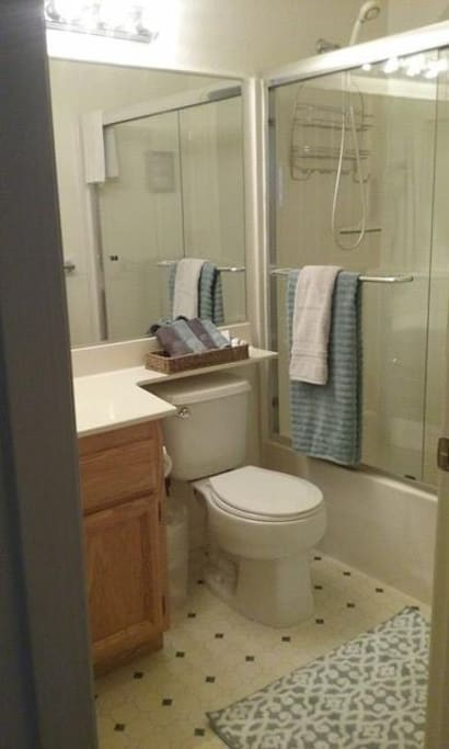 Shared Bathroom (when other room is occupied)