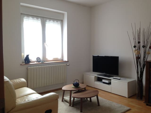 Spacious Private Full Apartment - Rédange