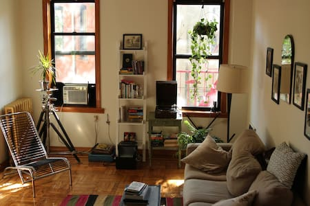 Cozy Apartment in Crown Heights - Brooklyn - Apartment