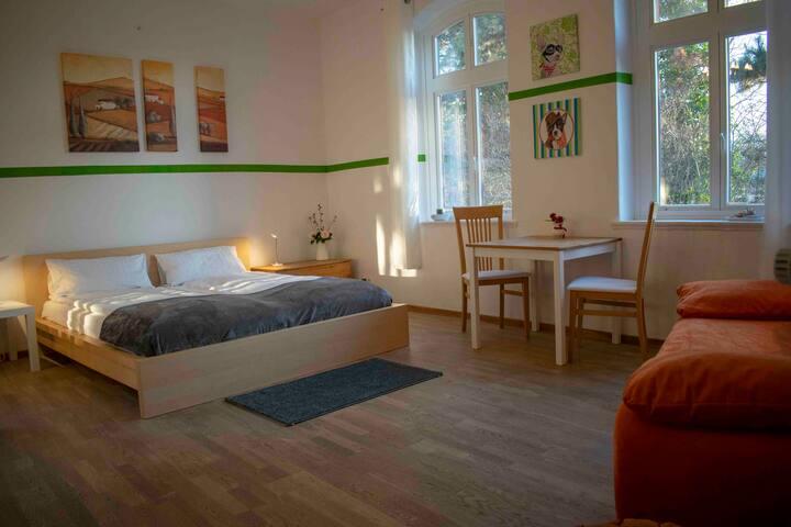 Sülfmeister Haus - Loft mit Blick zum Salzmuseum