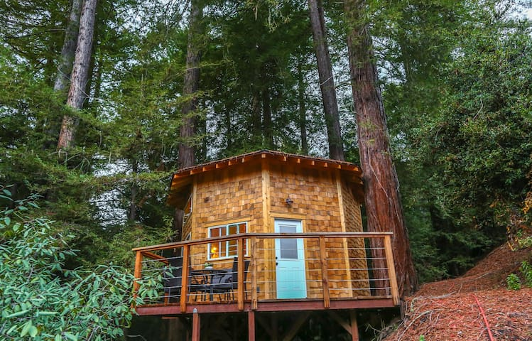 Redwood Tree House at Retreat, Shelter-in-Paradise