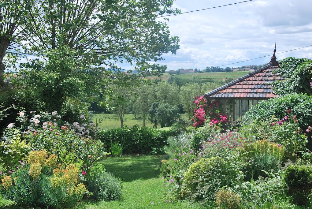 une belle vue sur les vignes et parfois même sur le Mont Blanc