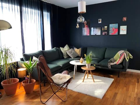 Entire house 18min walk from city center waterfall