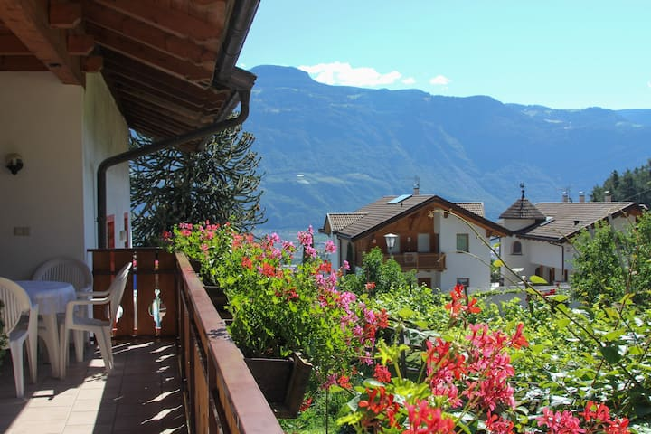 Charming Apartment B-Obermösslhof with Wi-Fi, Terrace & Mountain View; Parking Available, Pets Allowed