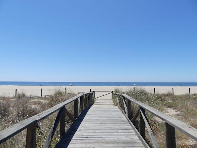 3v1. * Apartamento en la zona de la playa *