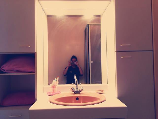 Old School Pinky Bathroom 1