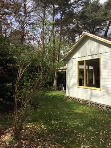 Huisje Zuidlaren nabij Groningen & Wildlands Emmen - Zuidlaren - Cabana