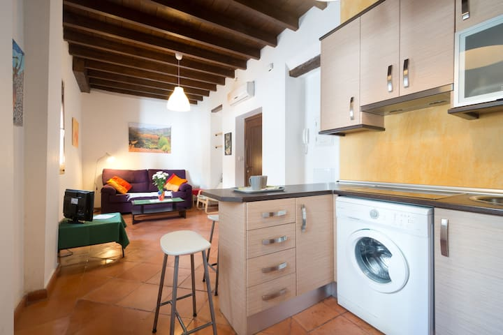 Central, near the Alhambra, quiet and autentic! - Granada - Departamento