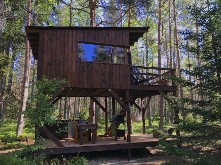 Tahkuna tree-house
