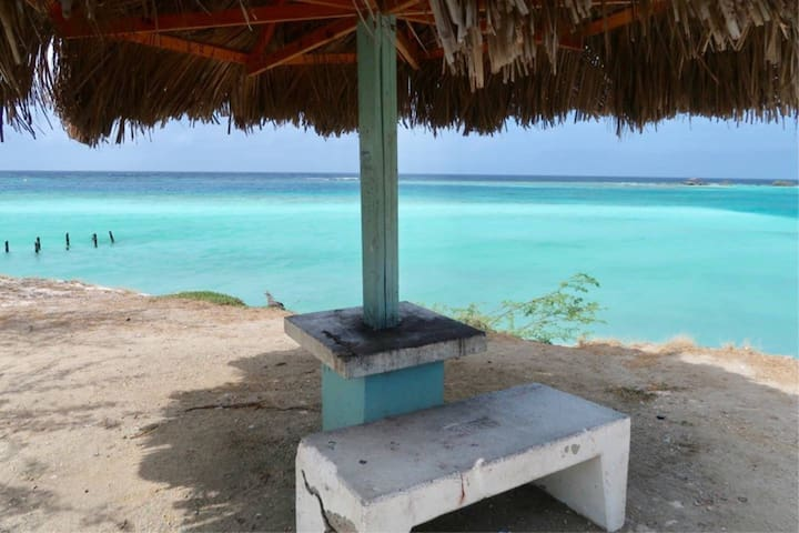 Beachfront Honeymoon #1