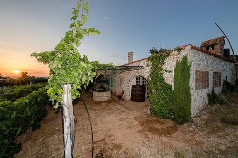 Цілий будинок екологічного виноградника