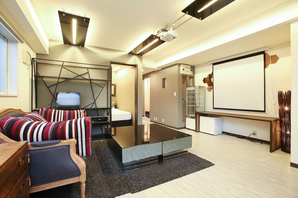 Lounge and living space including projector television