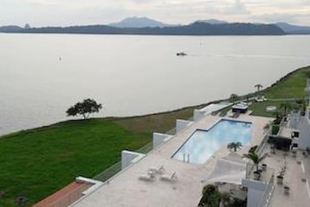 Panama Canal & Panama City  Oceanfront Studio/Apmt