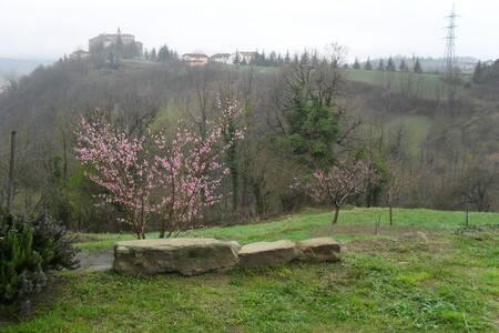 Antico Casale dei Conti di Sale - Sale San Giovanni - บ้าน