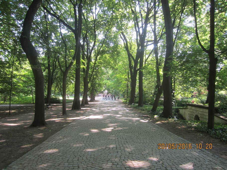 Most beautiful park in the street