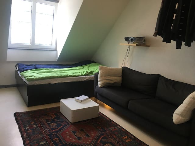 cheap room in vibrant student area