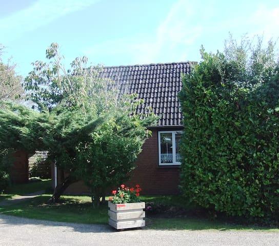 Freistehendes Ferienhaus in einem Park - Brouwershaven - Bungalow