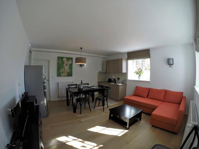 Le Gîte de la Villa du Coteau à Obernai (Alsace) - Obernai - Departamento