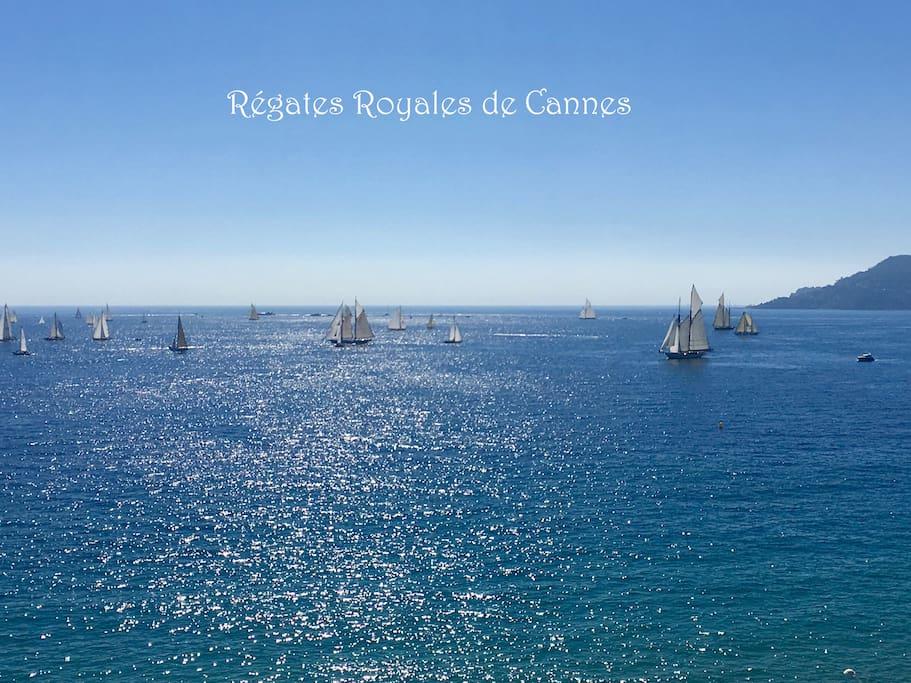 Régates Royales de Cannes