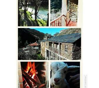 Duarte Guest House Arouca - Janarde Arouca - Villa - 2