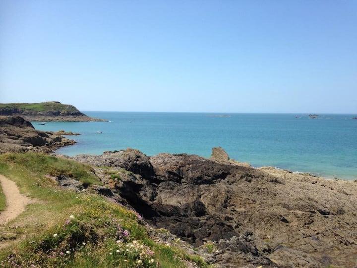 la mouette corsaire face a la mer