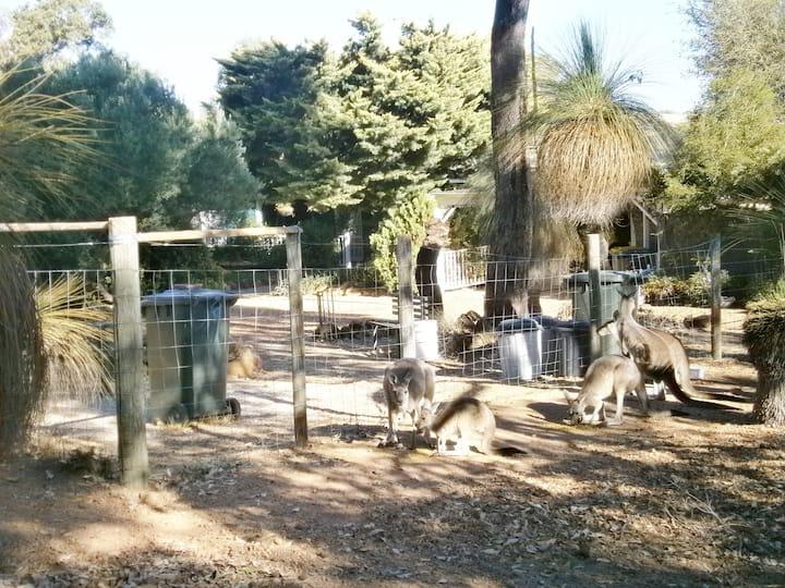 Wildlife Retreat Queen Room