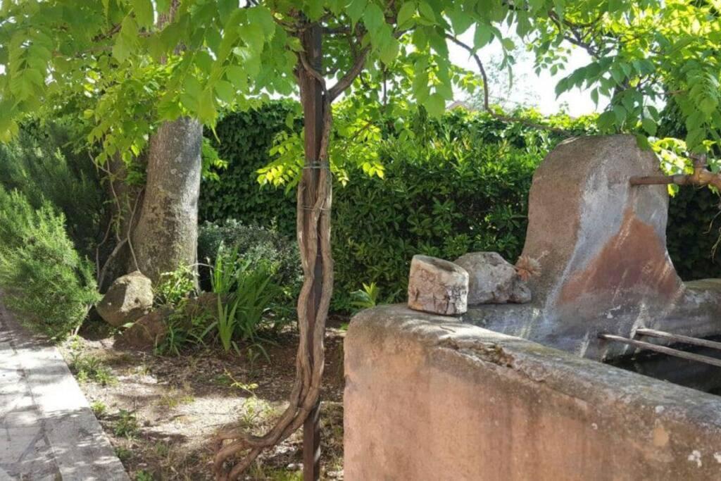 l'antica fontana