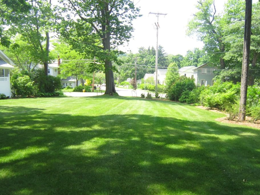 HUGE front yard to run and play