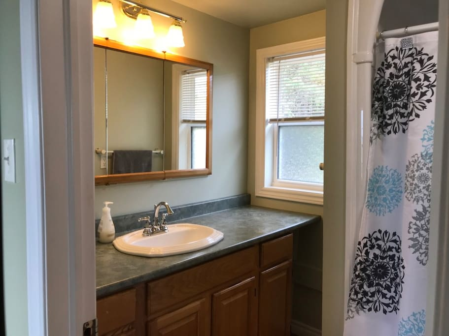 Simple yet complete bathroom with tub/shower combo.