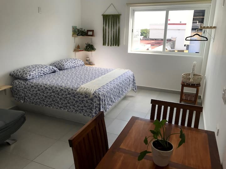 Your Perfect Cozy Loft In Downtown Cancun