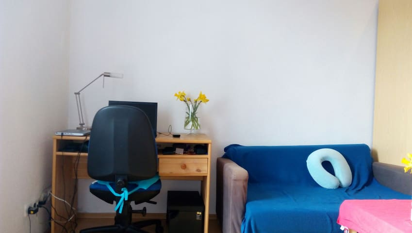 Spacious room in the city center - Ilmenau - 公寓