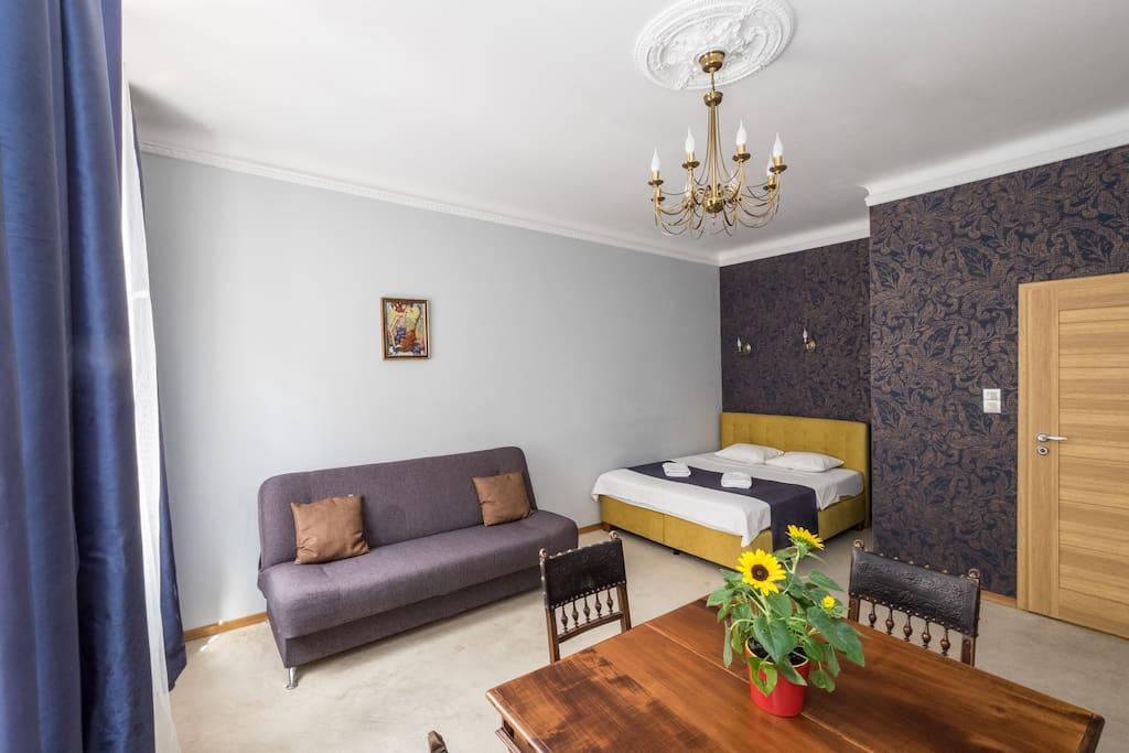 Widok na salon / sypialnię 1, łóżko 160 x 200