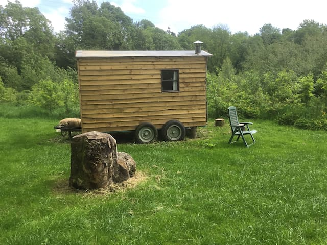 """The Meadow"" Shepherds Hut @ Ballymartrim Wood"