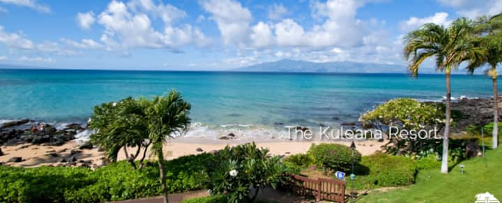 Kuleana 1-BR condo - Sleeps 4 REDUCED!