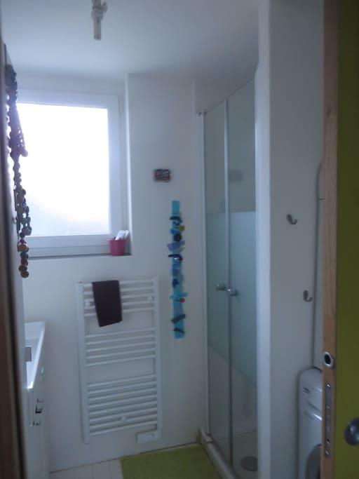 la petite salle de douche